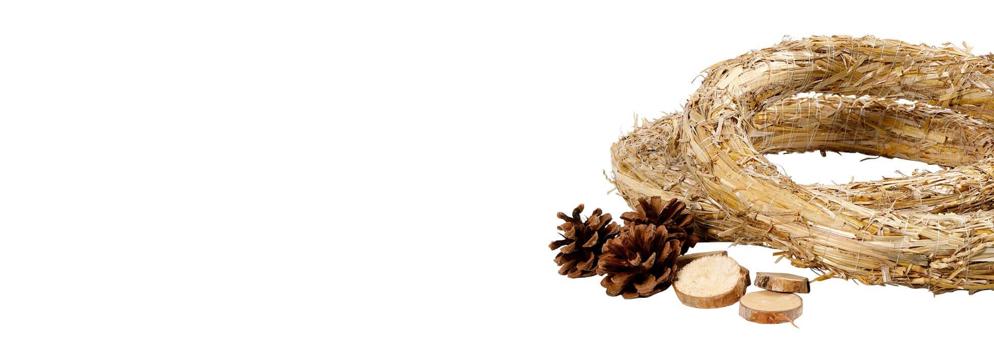 Arreglo floral y suministros para cestería