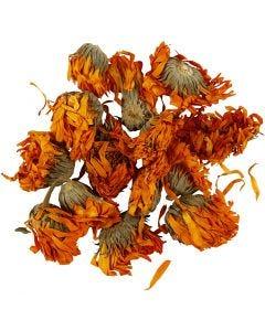 Flores secas, Caléndula, dia: 1 - 1,5 cm, dorado, 1 paquete