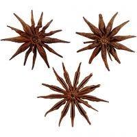 Anís estrellado, dia: 15-20 mm, 250 gr/ 1 paquete