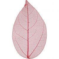 Esqueleto de hojas, L. 6-8 cm, rojo, 20 ud/ 1 paquete
