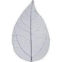 Esqueleto de hojas, L. 6-8 cm, azul, 20 ud/ 1 paquete