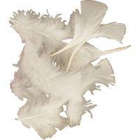 Plumas, medidas 7-8 cm, blanco, 500 gr/ 1 paquete