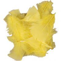 Plumas, medidas 7-8 cm, amarillo, 500 gr/ 1 paquete