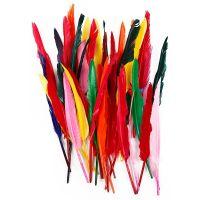 Plumas, L. 29-31 cm, surtido de colores, 100 ud/ 1 paquete