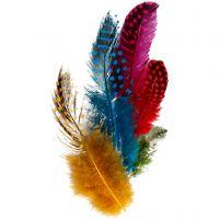 Plumas de gallina de guinea, surtido de colores, 3 gr/ 1 paquete
