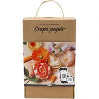 Kit de aprendizaje de Papel Crêpe, 105 gr, surtido de colores, 1 set