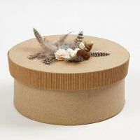 Corrugated Board, Feathers and Seashells on a Box with a  Lid